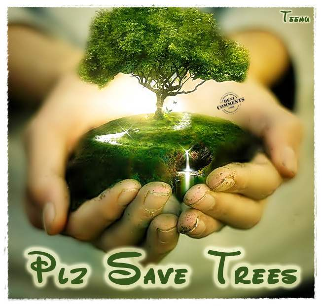 some ways you can save trees ajay pratap singh